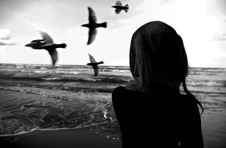Fly Me Away ...