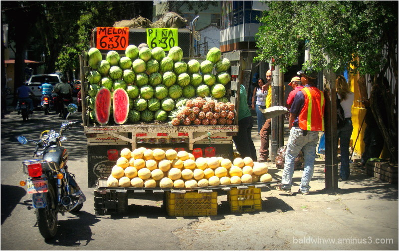 Melon 6 x 30 ...