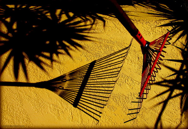 Raking shadows ...