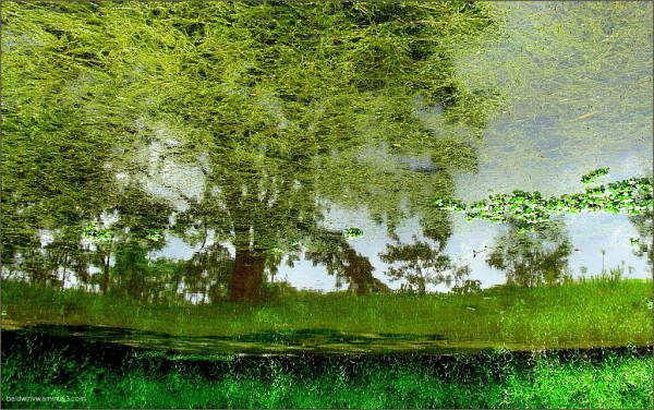 My world upside down ...