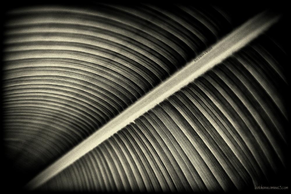 Archway ...