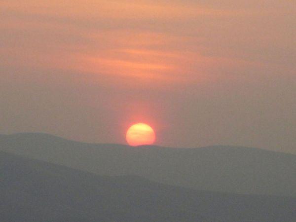 Pokey Sunset :(