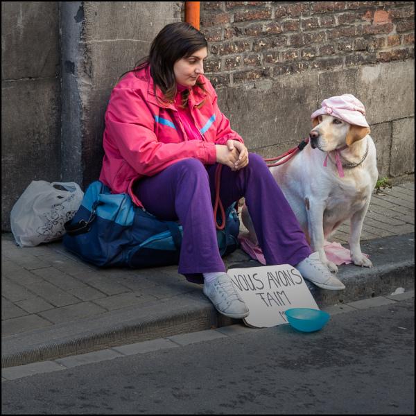 beggar street photography dog