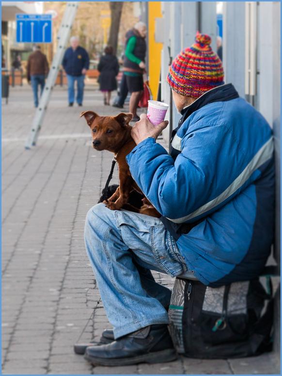 beggar, dog