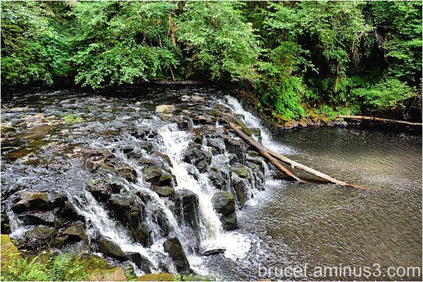 Beaver Creek Oregon II