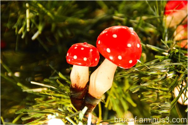 Christmas Ornaments - Mushrooms