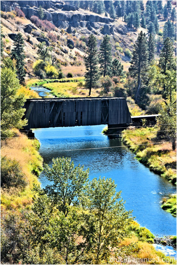 Covered bridge in the Palouse Area