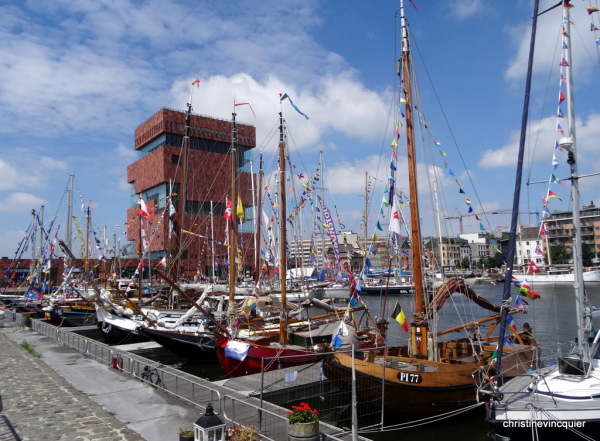 tall ships race antwerp 1