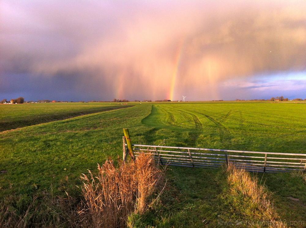 regenboog rainbow no pp