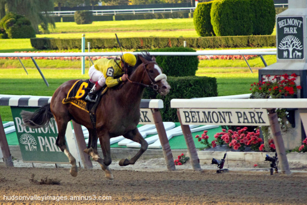 2011 Champagne Stakes