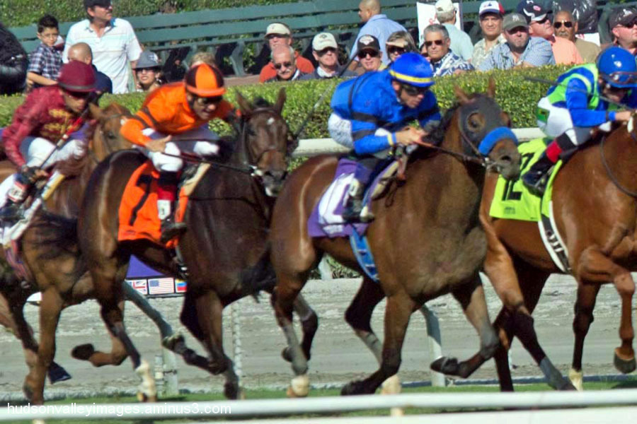 2012 Breeders' Cup Juvenile Turf Sprint Preview