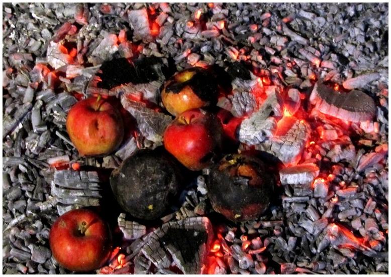 burned Loves!