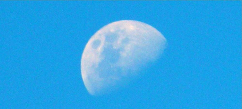 Luna temprana