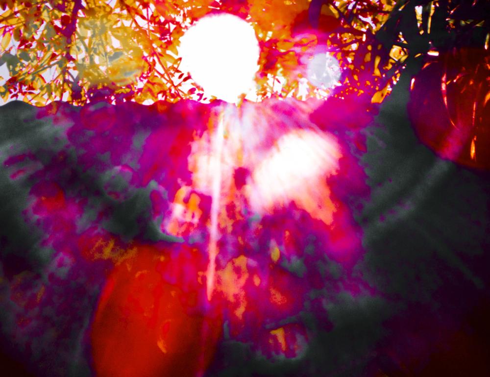 Fantasía Solar  4 - 5