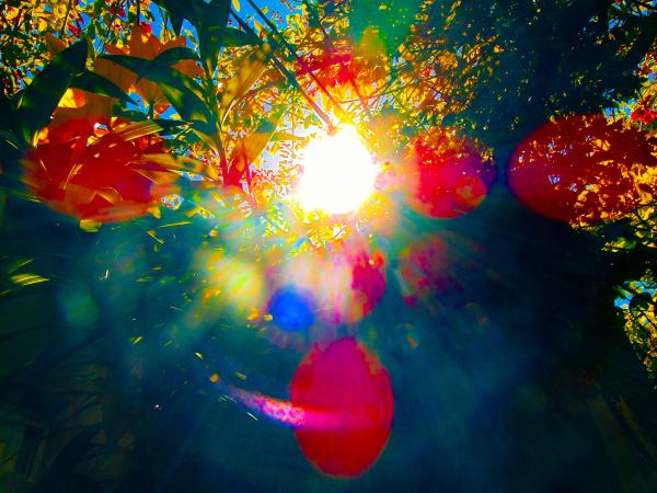 Fantasía Solar  3 - 5
