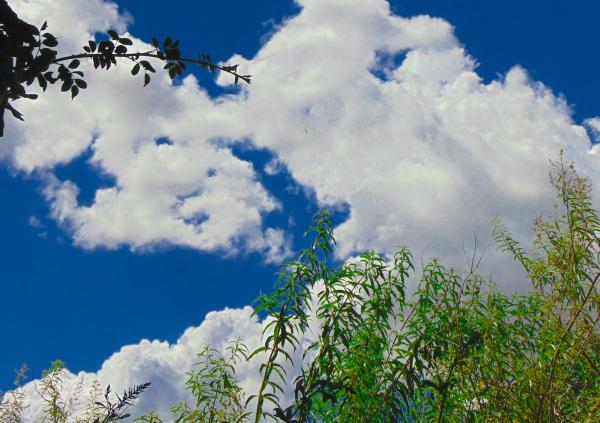 Mirando al cielo 3 - 3