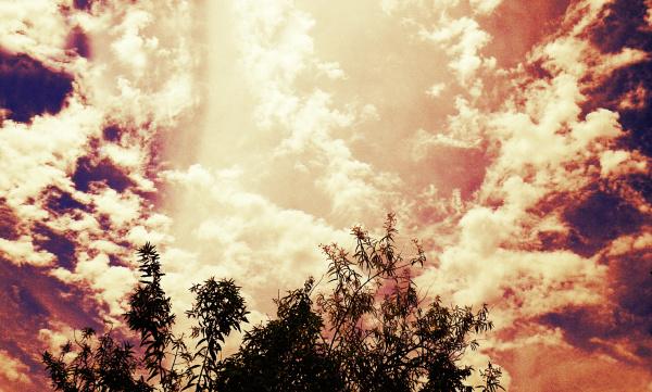 Vistas del cielo 4 - 6