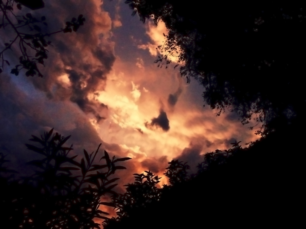 Vistas del cielo 5 - 6
