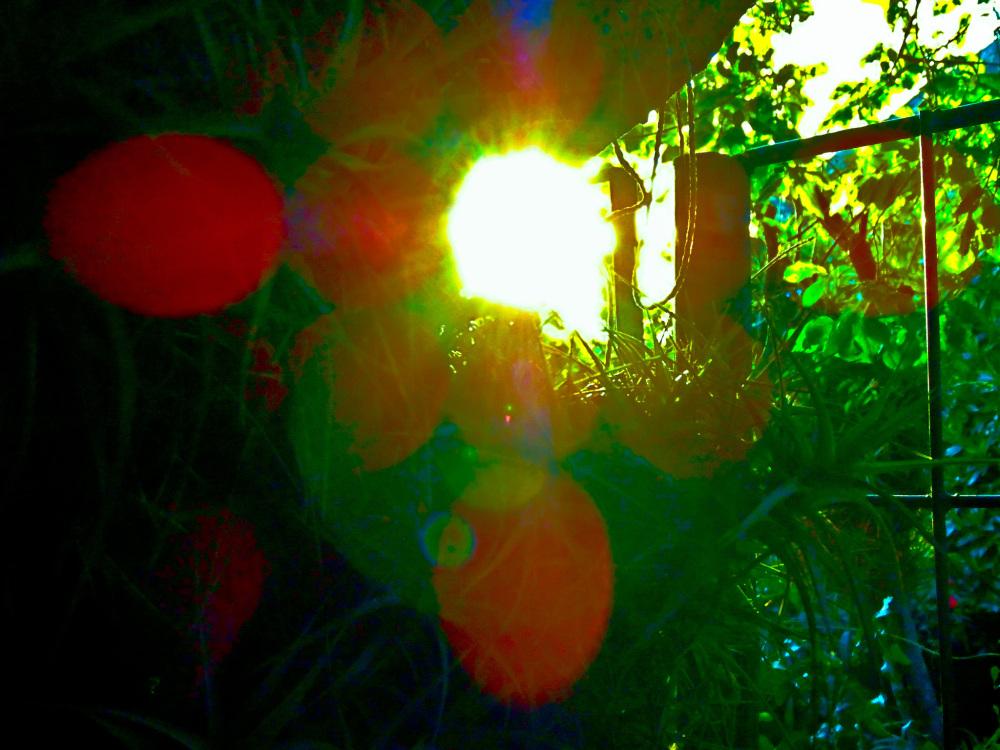 Paisaje luminoso 2 - 2