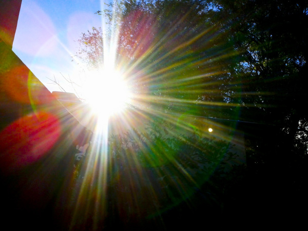 Reflejo de sol 1 - 3