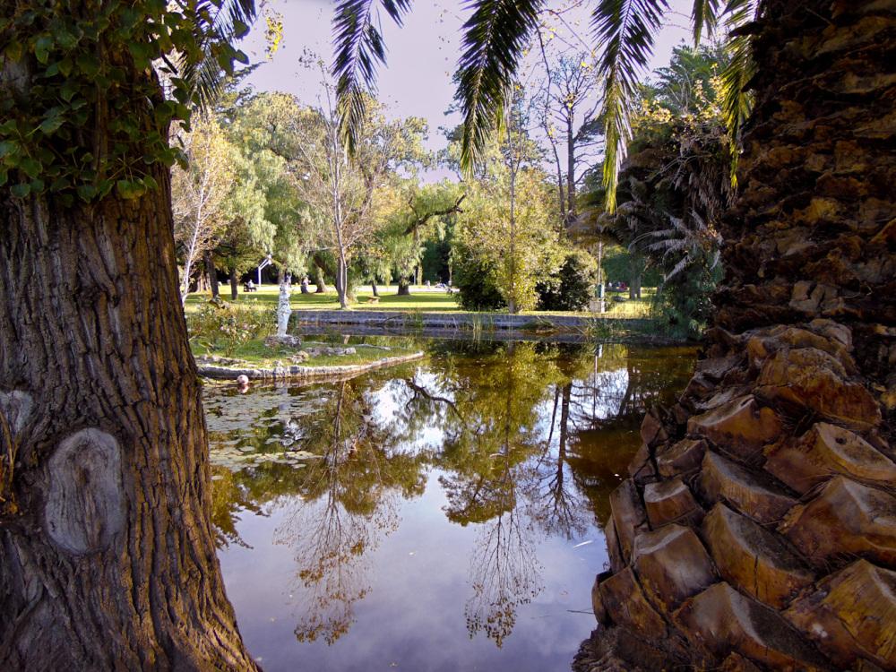 Parque Angel L. Cabañas 6 - 12