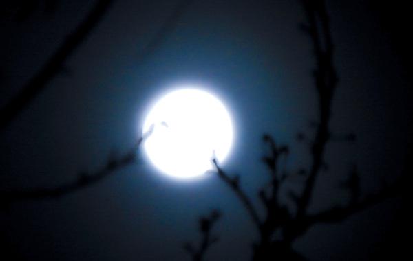 Luz de luna 2 - 2