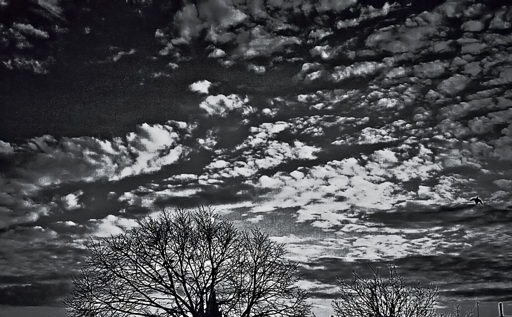 Cúmulos de nubes 1 - 7