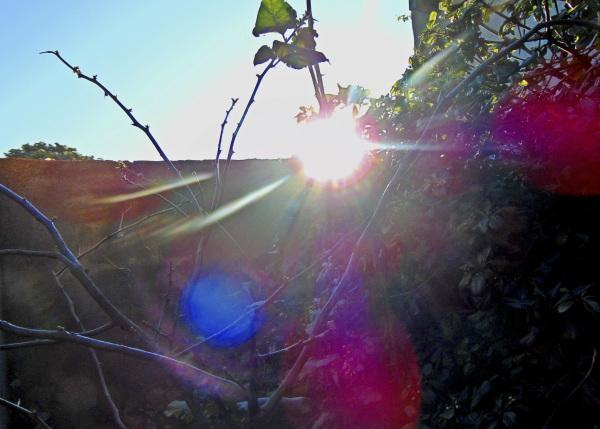 Luz solar 5 - 6