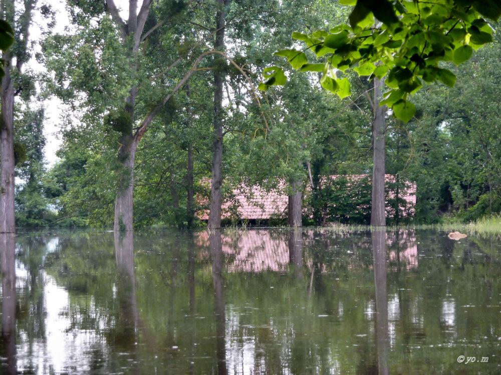 Inondation  # 2