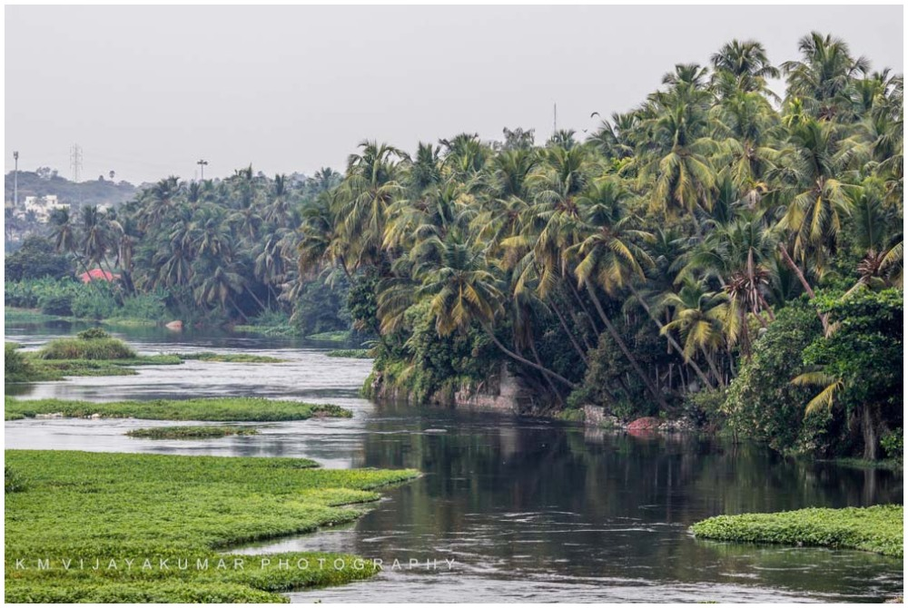 River Side near Bhavani, Erode District, Tamilnadu