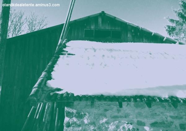 des effets sur neige et sur glace