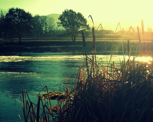 la nature en hiver 2/2