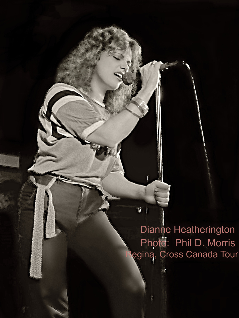 Dianne Heatherington