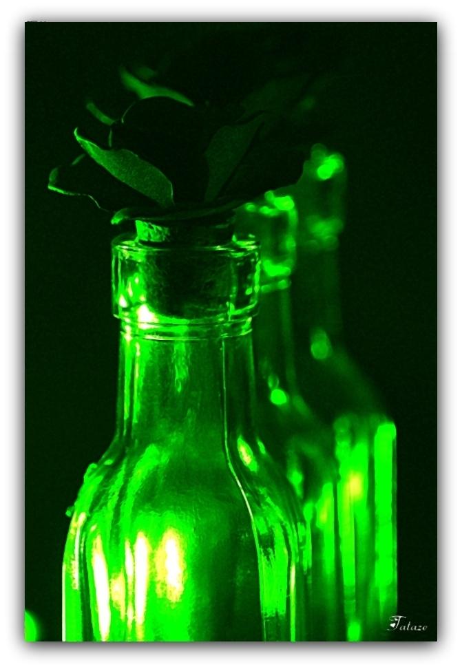 Envie de Vert