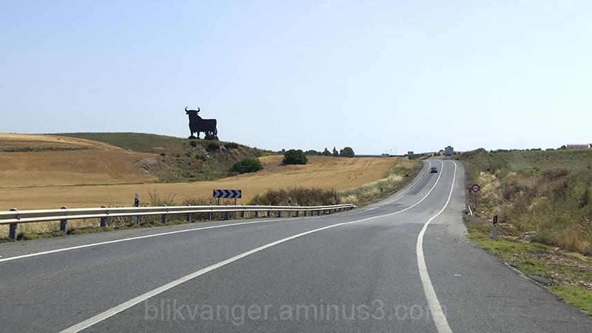 blikvanger1281