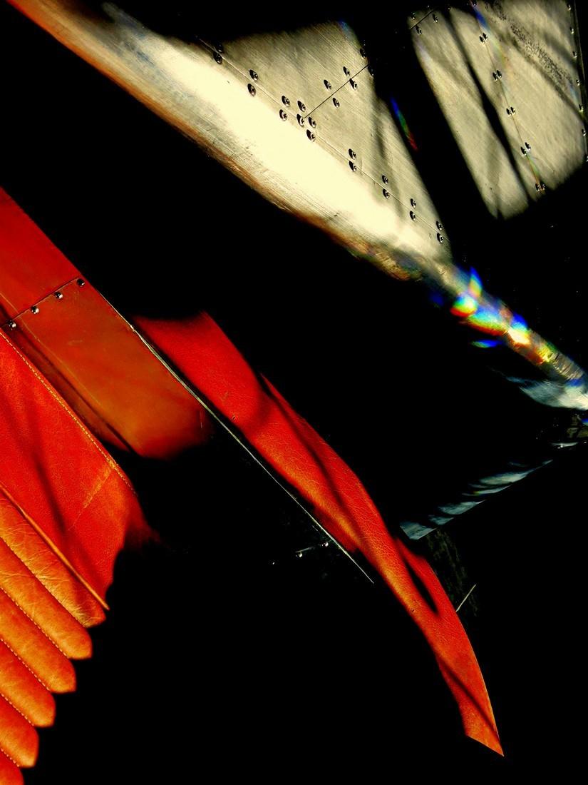 liés par la lumière  -  tied up by light