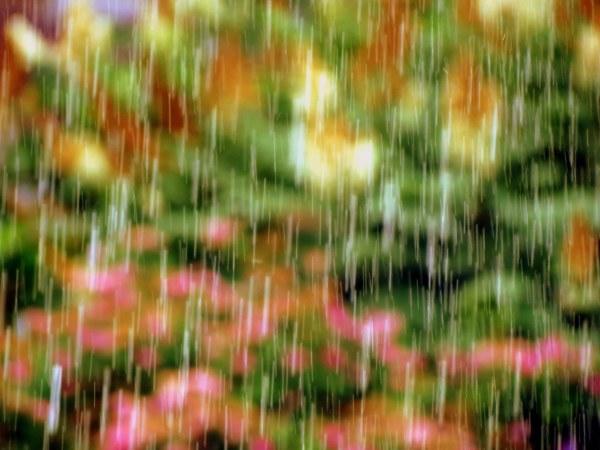 sous la pluie - under rain