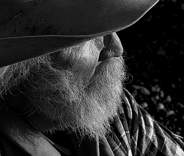 the old cowboy