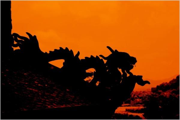 dragon à contre jour