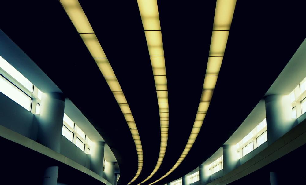 suivez la lumière