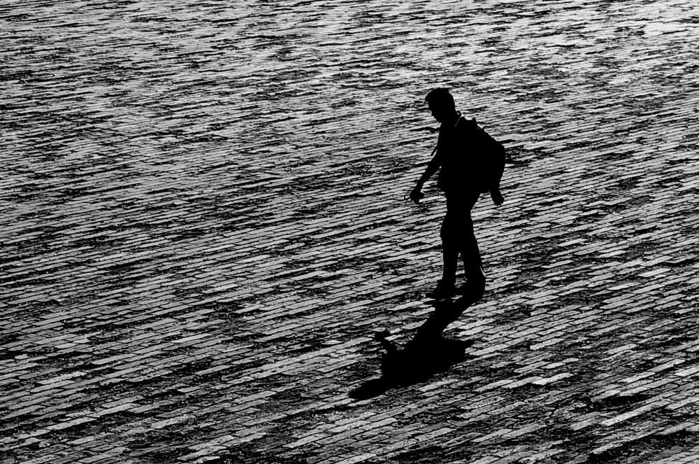 le marcheur solitaire