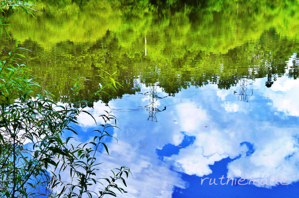 Reflection on a pond
