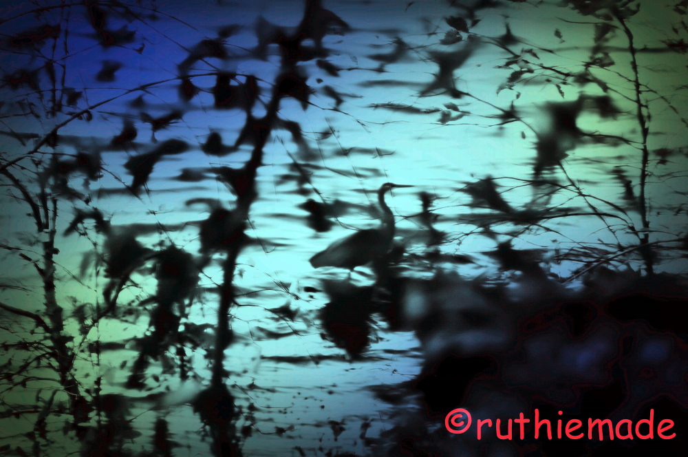 FInd Heron silhouette