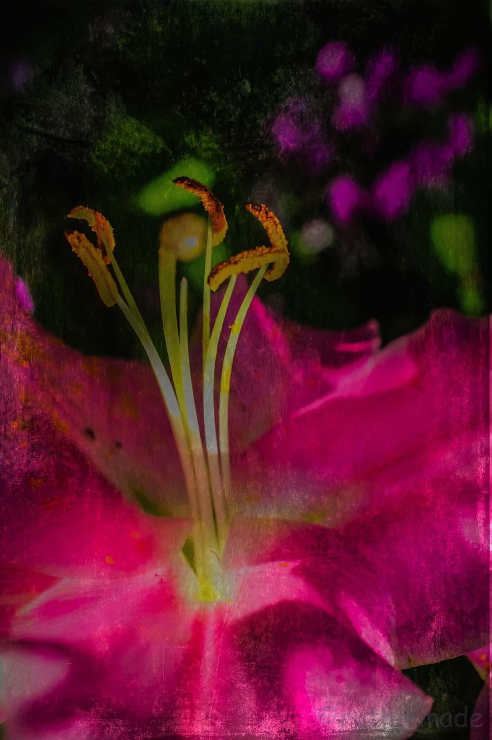 Texture Flower 1