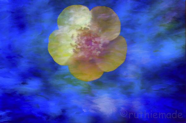 Texture Flower 5