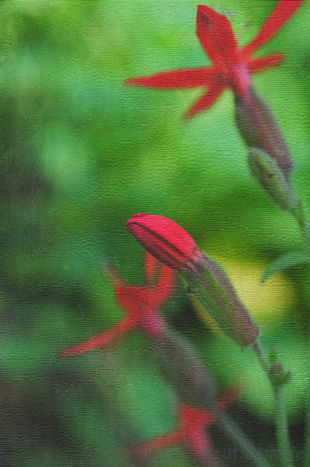 Texture Flower 11