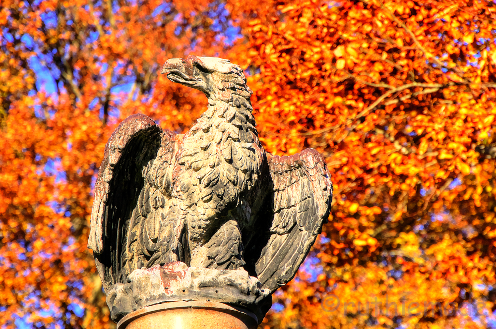 Eagle statue in fall