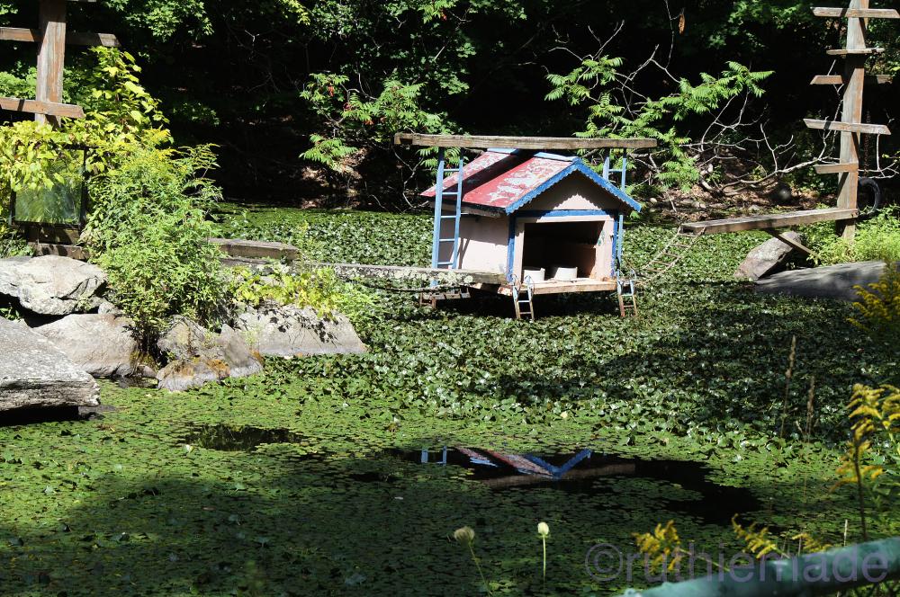 Old Catskill Game Farm 11