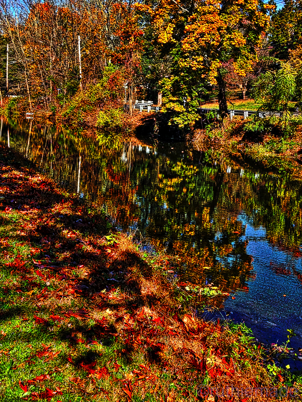 Along the canal in Autumn