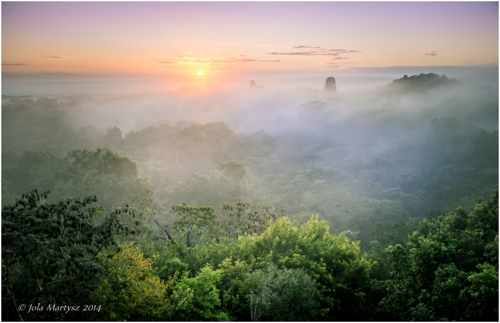 Sunrise in Tikal Guatemala from the Templo IV.